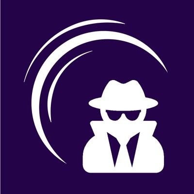 SkyNav Logo Services Virtual Inspectorate